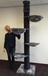 Maine Coon Tower Blackline - 265 cm - Review Test
