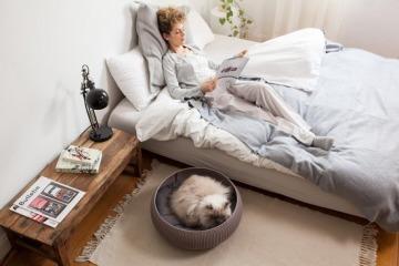 Curver Cozy Pet Bed kat