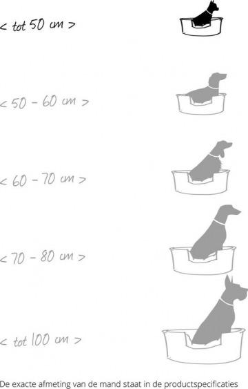 Curver Cozy Pet Bed test