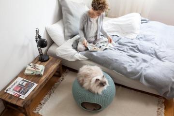 Curver Cozy Pet Home review test